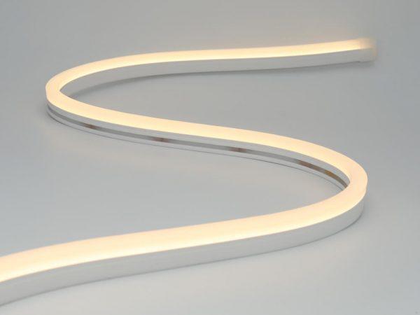 neon led flex 0816